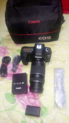 CANON 5D MARK II with 75*300 lenes image 3