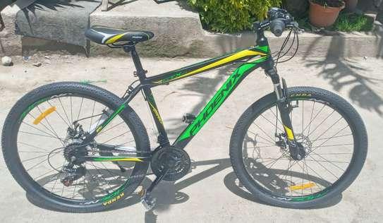 Phoenix Bicycle GTX(New))