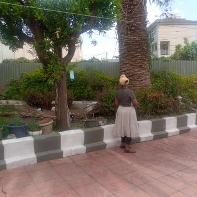 Furnished House for rent in bole homes compound image 8