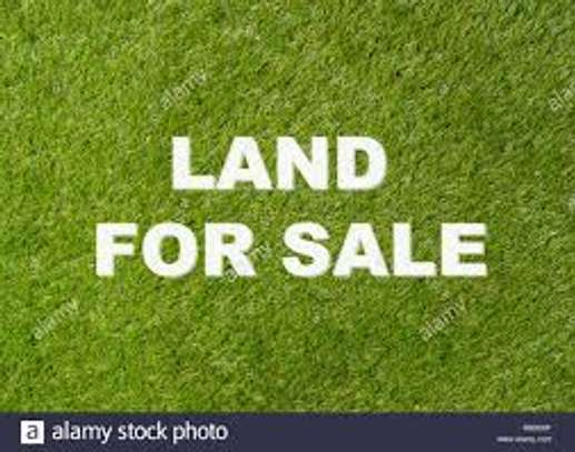 140 Sqm Land For Sale