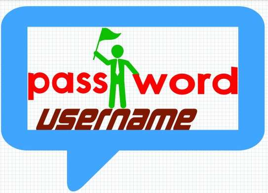 PASSWORD IT SOLUTION