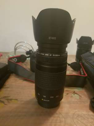 Canon EOS 60D WITH LENSE 18-135mm (Professional) image 6