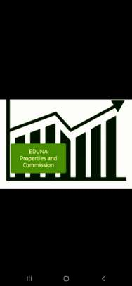 EDUNA PROPERTY MGT AND COMMISSION AGENT