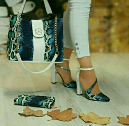 Michael Crux Bag and Shoe Combination