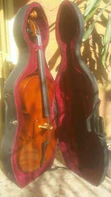 Cello (Alfred Stingl by Hofner ) image 1