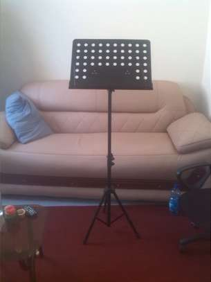 Professional Musical Note Stand