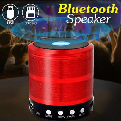 Mini Bluetooth Speaker with Aux, USB, SD Card, FM support