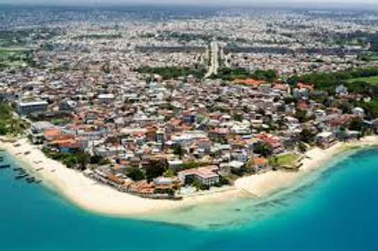 if you want to invest in Zanzibar