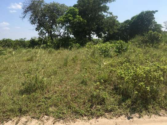 FARMLAND FOR SALE AT BUMA IN BAGAMOYO TOWN image 5