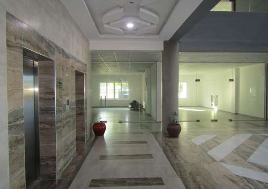44 - 240 Square Meters Office / Commercial Space in Oysterbay image 4