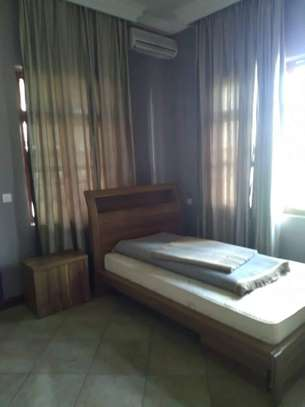 8 Bdrm Fully furnished House at Burka in Arusha image 9