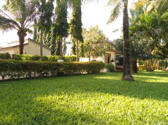 4bed house for sale at mbezi beach 2800sqm area with swiming pool image 9