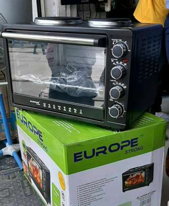 EOUROPE ELECTRIC MICROWAVE image 1