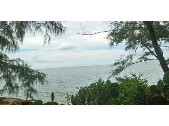 amaizing beach house for rent at ras kilomoni $1200pm image 3