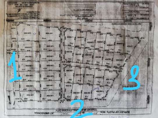 Plot for sale Kigamboni very close to Zoo image 4