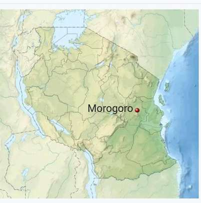 MOROGORO LARGE SIZE LAND AT GOOD LOCATION AT VERY LOW PRICE FOR SALE image 12