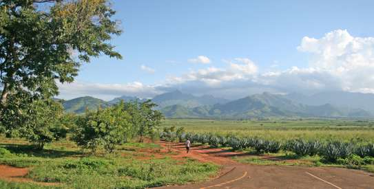 1500 Acres of Land at Morogoro, Tanzania