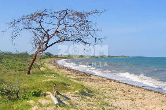Beach Plot for sale at Saadani National Park.