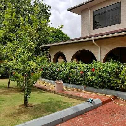 House For Rent At Kawe Beach image 5