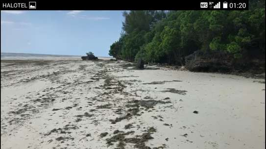 7 Acres Sea Front Plot for Sale- Zanzibar Island