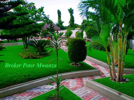 HOUSE FOR RENT image 3
