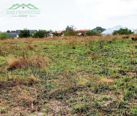 #STRATEGIC COMMERCIAL LAND FOR SALE AT KIBAHA TOWN image 5