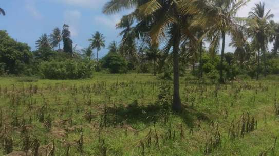 574 Sqm Plot near the Beach at Mbutu mkwajuni kigamboni