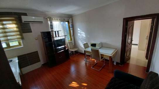 1bhk apartment furnished for rent at OYSTERBAY image 4