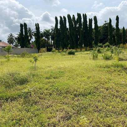 Plot for sale location sala sala image 8