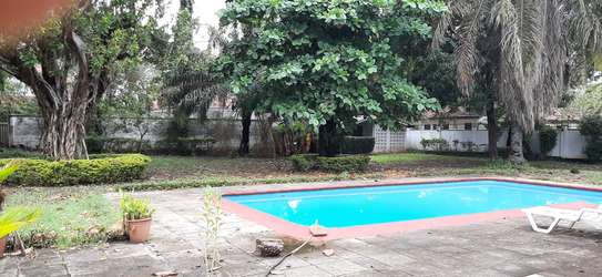 4 Bedrooms Large House For Rent In Oysterbay image 6