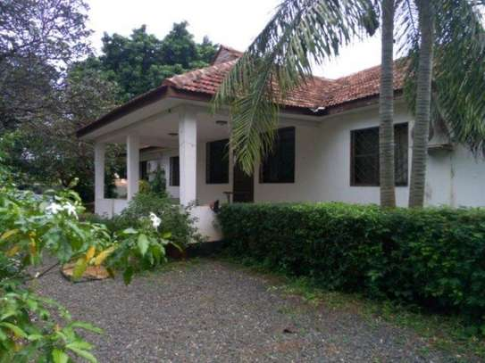 4bed houde at oyster bay $2000pm image 13