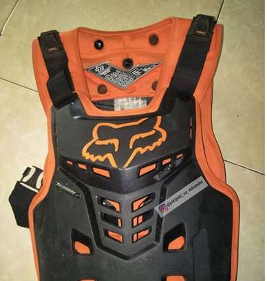 Body Protector image 1