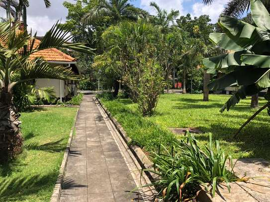 3 Bedroom House Immediately Available For Rent In Oyster-bay image 1