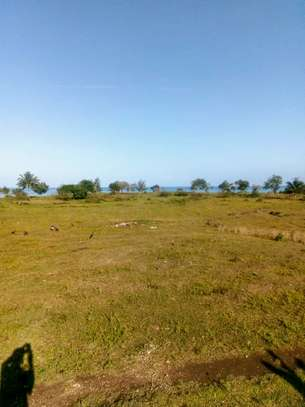 OCEANFRONT LAND FOR SALE IN PEMBA ISLAND-ZANZIBAR image 4