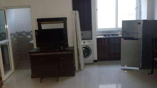 studio apartment at msasani  $500pm