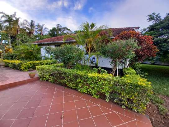 OYSTERBAY BUNGALOW FOR RENT image 3