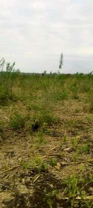 Plot for sale...goba image 1