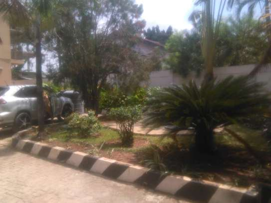 2bed  furnished at mikocheni b$800 image 8