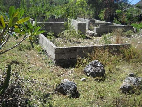 Second raw Plot of land for  Sale Zanzibar, Tanzania image 1