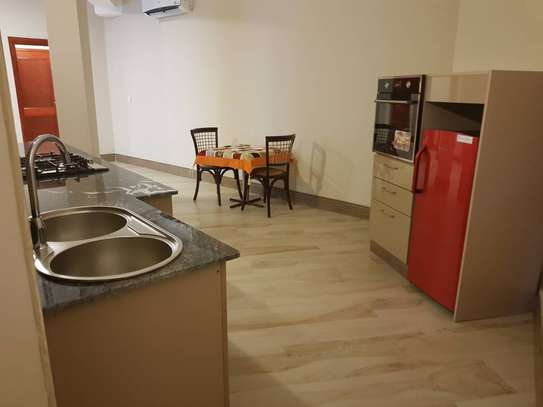 Beautiful Modern and Spacious 1 Bedroom Apartments in Msasani Beach image 4