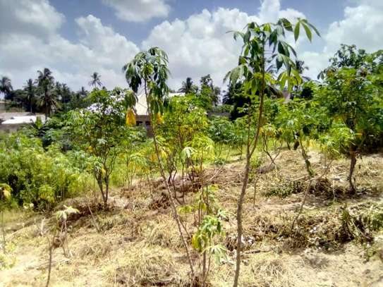 1 Acre land going cheap at Pugu Center/corner image 5