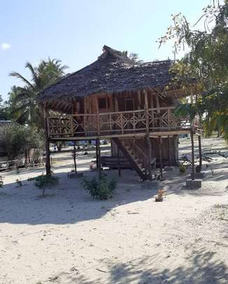 9 ACRES BEACH PLOT  AT BAGAMOYO image 8