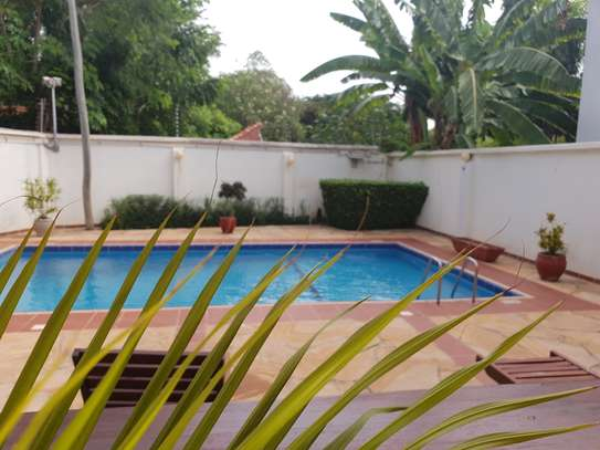 Large, spacious 4 bedroom house for rent with garden image 1