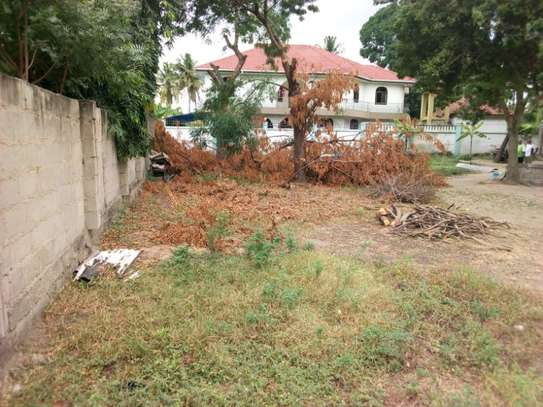 plot 2000sqm at mbezi beach tsh 200milion image 3