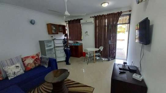 NICE 1BHK APARTMENT FULLY FURNISHED FOR RENT AT MIKOCHENI image 5