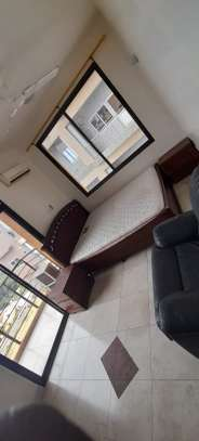SPECIOUS 3 BEDROOMS FULLY FURNISHED FOR RENT AT UPANGA image 8