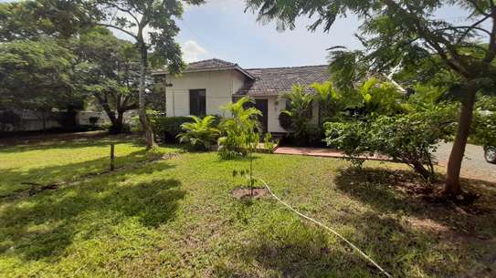 3 Bedrooms  House For Rent in Oysterbay image 2
