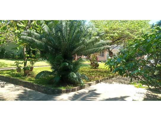 big house 5bed furnished at mikocheni a $1500pm big garden image 4