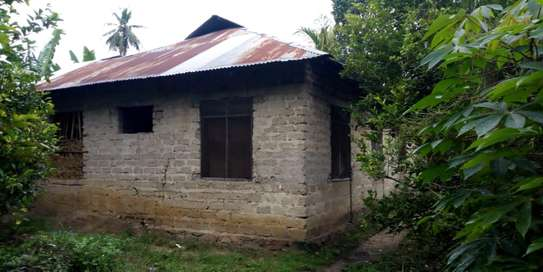 3 Bdrm House in Tanga image 2