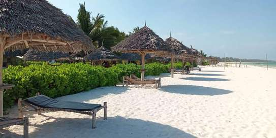 12 Bedrooms Beach Lodge in - Zanzibar Island
